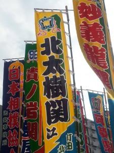 2014.11.19相撲6