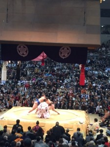 2014.11.19相撲5