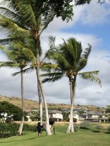 2014.12.20ハワイ2